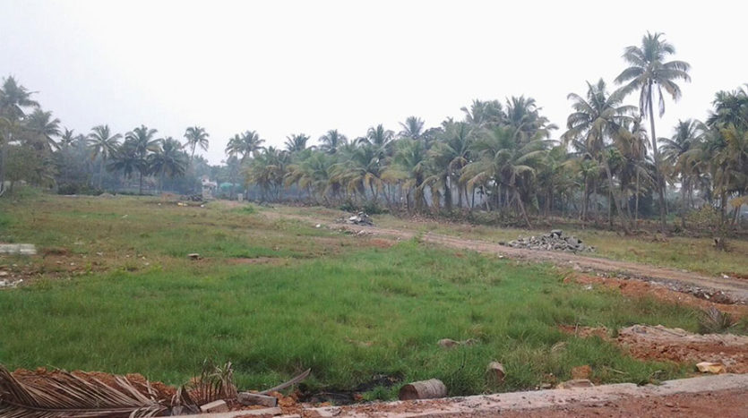 waterfront property for sale in ernakulam